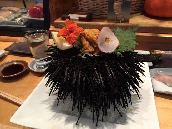 Asanebo: Beautiful sea urchin