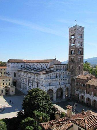 Chiesa e Battistero di San Giovanni e Santa Reparata: Views from the tower