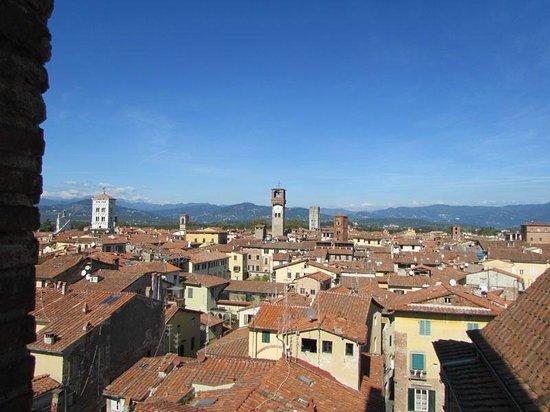 Chiesa e Battistero di San Giovanni e Santa Reparata: Second view from the tower