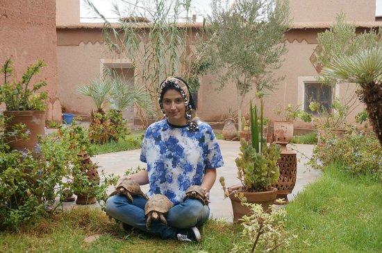 Hdida, Marruecos: dehors