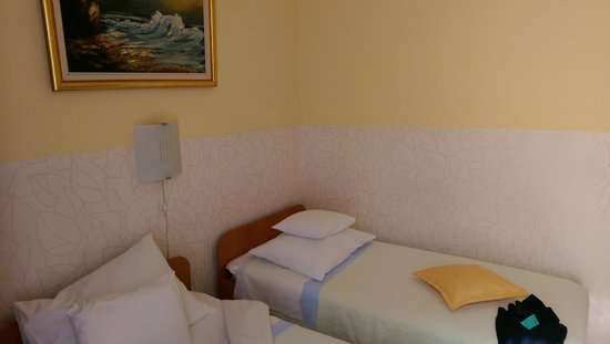 Guesthouse Vrlic : Double room.