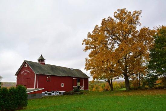 The Inn At Mount Pleasant Farm: The old barn