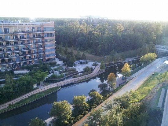 The Woodlands Waterway Marriott Hotel & Convention Center : View from room