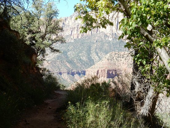 Watchman Trail: view north