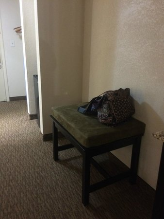 Quality Inn and Suites Airpark East: Luggage Bench