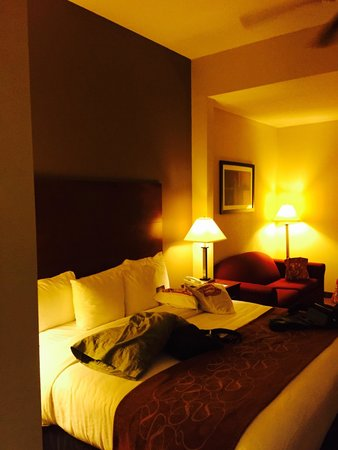 Comfort Suites Raleigh Durham Airport/RTP: Room 132