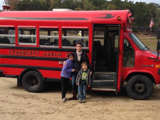 Cranberry Bog Tours: The Bog Bus. Cranberries, here we come!!