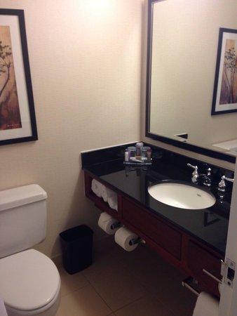 Atlanta Marriott Northwest at Galleria: Bathroom