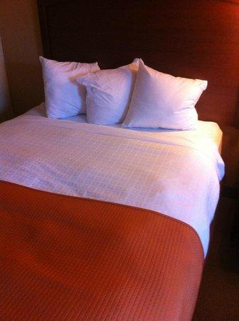 AmericInn Lodge & Suites Fargo West Acres: Mini Pillows?!?!