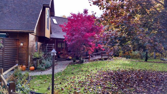 Horton Creek Inn B&B : Fall beauty
