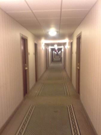 Comfort Inn Albany / Glenmont: Towards the hazmat door