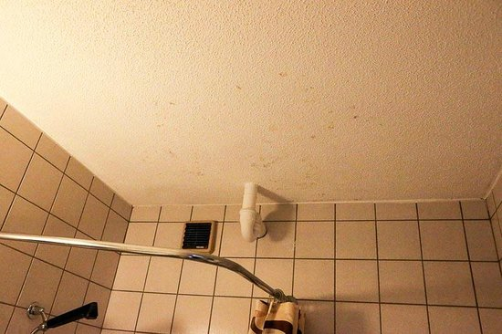 Hotel Roc et Neige: Mold on the bathroom ceiling.