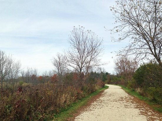 Blackwell Forest Preseve: West Branch Regional Trail