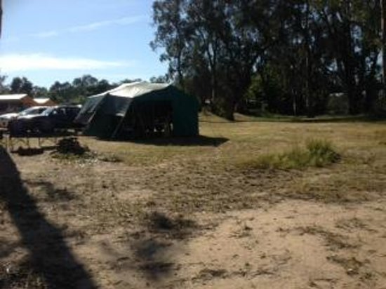 Barmah Caravan & Camping Park: Camp area