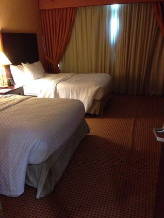 Embassy Suites Huntsville by Hilton Hotel & Spa: Room 1017