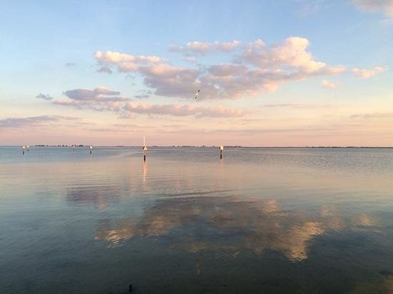 Safety Harbor Marina Park and Fishing Pier: so pretty