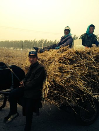 Heishan County, Китай: Scenes along the way after corn harvest