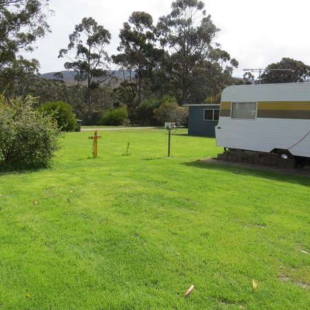 Captain Cook Holiday Park: grassy powered site