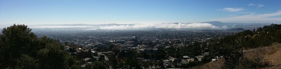 Lawrence Hall of Science : Fog moving in over the SF Bay from the back terrace