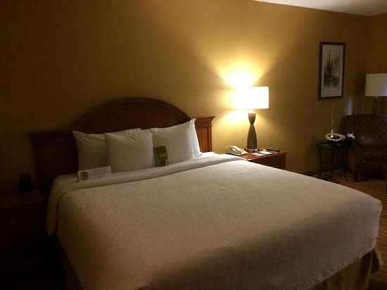 Hilton Garden Inn Scottsdale Old Town: Bed