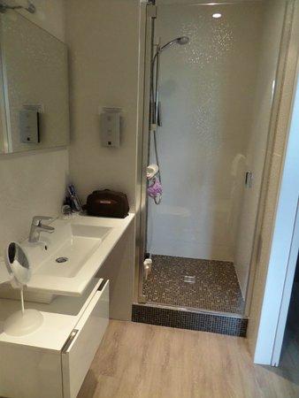 Hotel de Diane : Salle de bain chambre 201