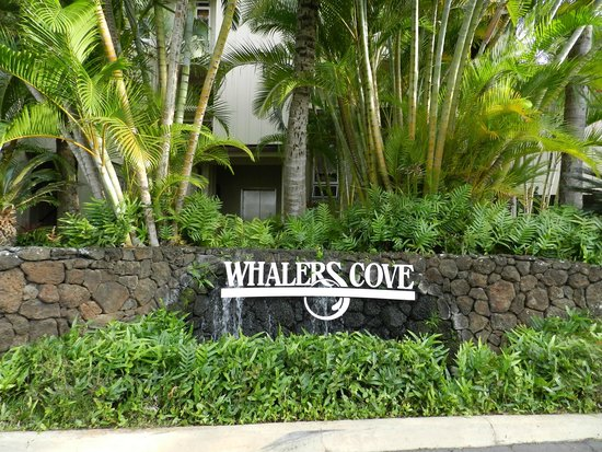 Whalers Cove Resort: entrance