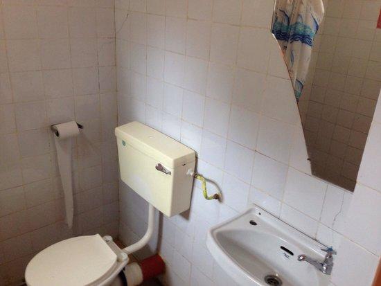 Lions Court Lodge : Toilet/shower