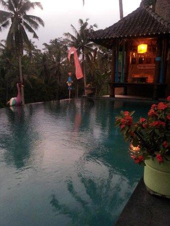 Capung Sakti Maison d'Hôtes : 1ère photo à notre arrivée