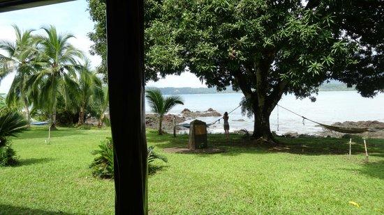 Drake Bay Wilderness Resort: View from room