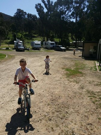Glenrowan Caravan and Tourist Park: Kids have been riding all day