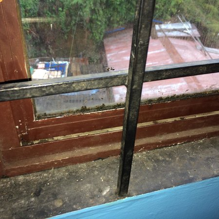 Munnar Mansion: Window looks like its never been cleaned