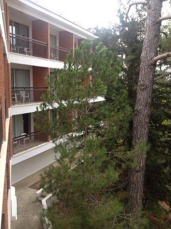Forest Park Hotel: вид с балкона шестого этажа