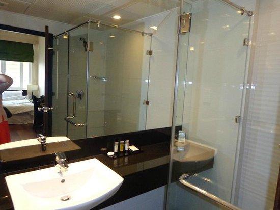Renuka City Hotel: shower and vanity