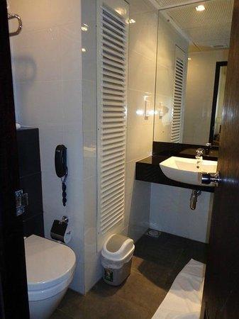 Renuka City Hotel: toilet, phone and vanity