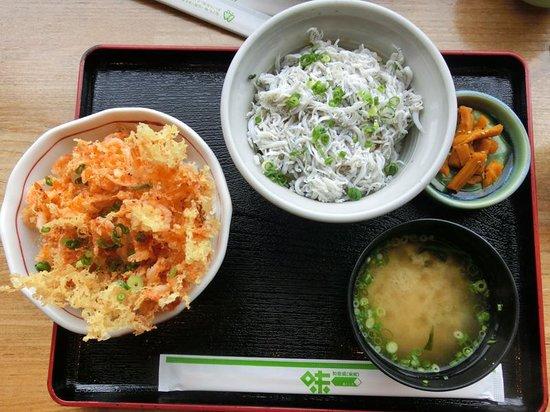 Michi-no-Eki Fujikawarakuza: 桜エビのかきあげとしらす丼