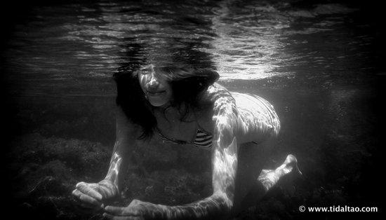 Tidal Tao Snorkeling Safaris: Underwater Photography