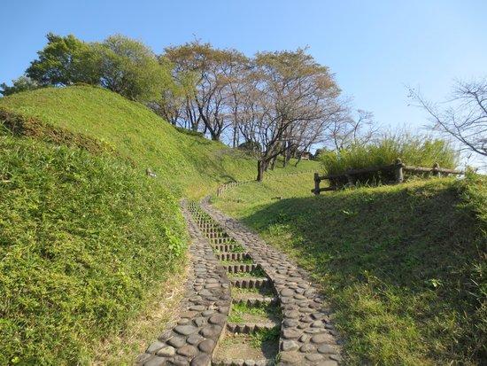 Gokan Castle