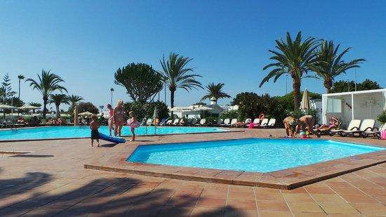 Canary Garden Club: Pools