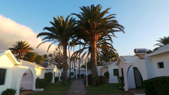Canary Garden Club: Bungalows