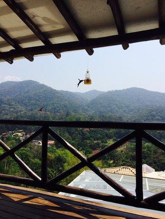 Pousada Terraco Penedo: Vista do restaurante da pousada