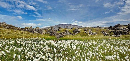 The Wonders of Snaefellsnes