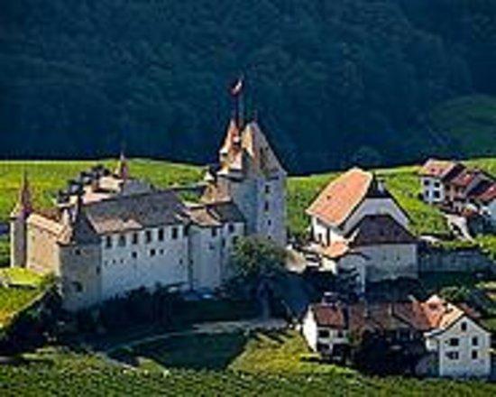 Aigle Castle: vista del castello