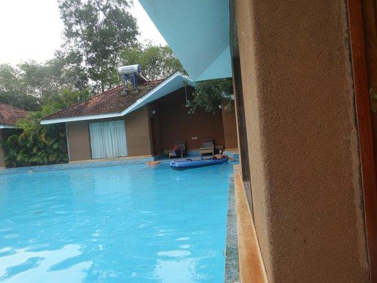SAJ Earth Resort : pool