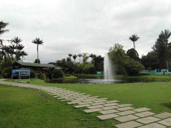 Ecosistemas Picture Of Jardin Botanico De Bogota Jose Celestino Mutis Bogota Tripadvisor