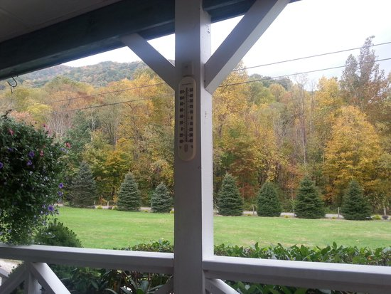 Misty Mountain Ranch: View from the front porch