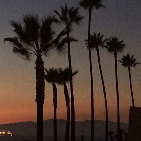 Shade Hotel: Beach at sunset