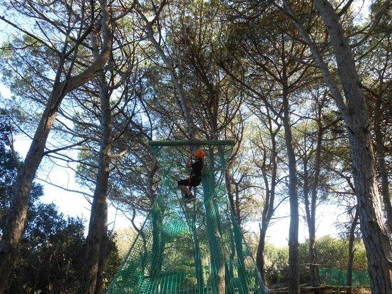 Parco Avventura Bosco Isola