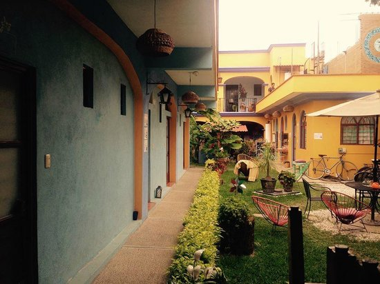 Azul Cielo Hostel: This is the garden, the view from the kitchen and from the living room.