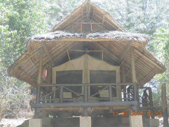 Samburu Intrepids Luxury Tented Camp: view from outside