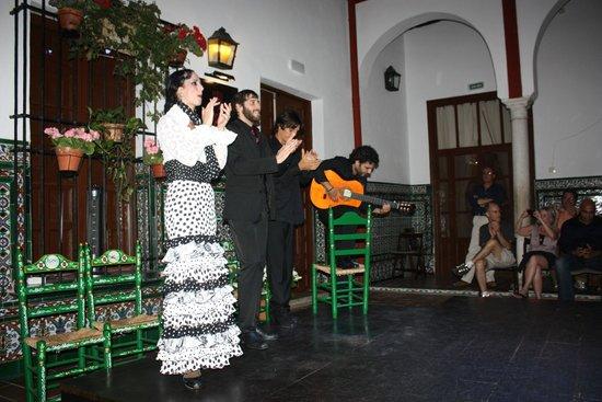 La Casa del Flamenco Auditorio Alcantara: La Casa del Flamenco Sevilla